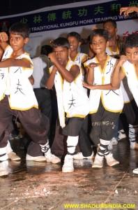 Shaolin Children Kungfu
