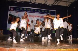 Shaolin Tai chi Academy