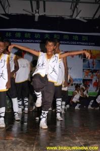 Shaolin Kung fu Crane Style