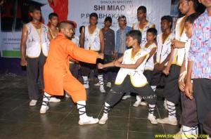 Kung-fu Master Sanda