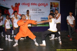 Shaolin Kungfu Sanda