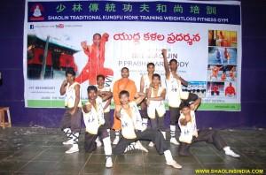Shaolin Wushu Team