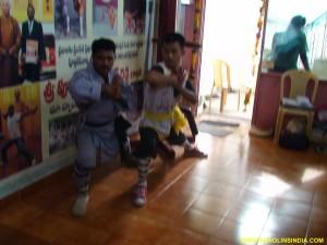 Shaolin Kung-fu Snake Style