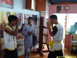 Shaolin Kung-fu Hand Training Combat