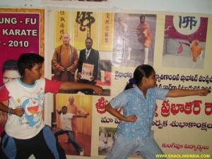 Shaolin Wushu Training AP