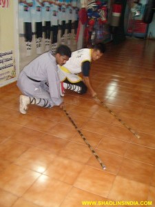 Shaolin Monk Training Master AP