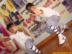 Shaolin Wushu Training Academy