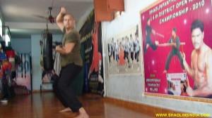 Wushu Training Master