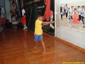 Shaolin Wushu Taolu Institute
