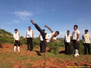 Shaolin Monk Kicks