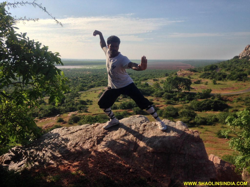 Shaolin Wusjhu Kungfu Trainer