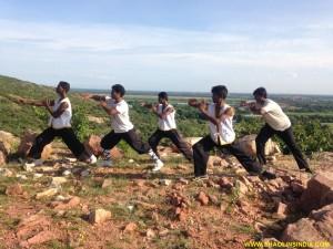 Shaolin Animal Kung-fu