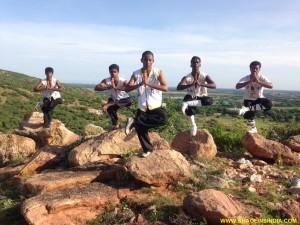 Shaolin Wushu Kung-fu
