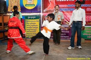 Chinese Wushu India