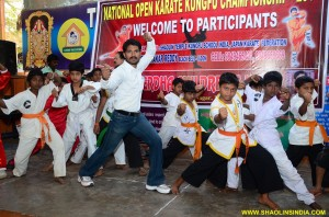 Wushu Indian Martial arts