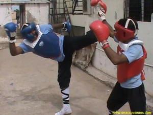 Kung-fu Karate Championship
