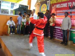 Shaolin Taolu Championship