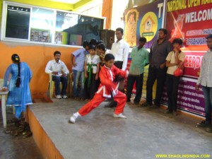 Shaolin Wushu Event India