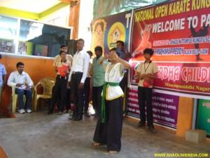 Shaolin Wushu Taolu India