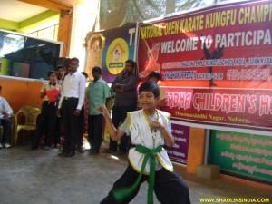 Shaolin Kung-fu Wushu India