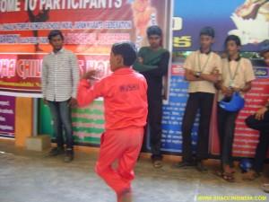 Shaolin Taolu India Wushu