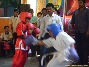 Shaolin Sanshou India