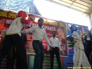Kung-fu Champions India