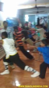 Shaolin Wushu Training