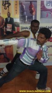 Kung-fu Animal Style