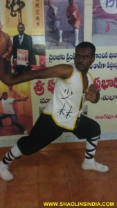 Shaolin Kung-fu Taolu