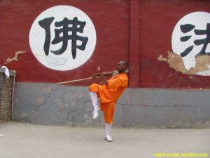 Kung-fu Staff Training Camp