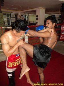 Kung-fu Sanda Training
