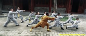 Wushu Warrior Monk Indian Kung-fu