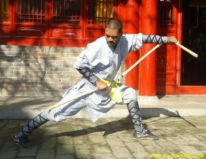 The Best Indian Kung-fu Master Prabhakar Reddy