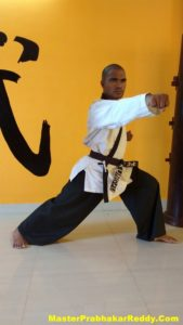 The Great Indian Martial arts Academy
