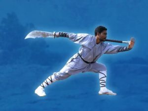 Shaolin Warrior Monk Shifu Prabhakar Reddy